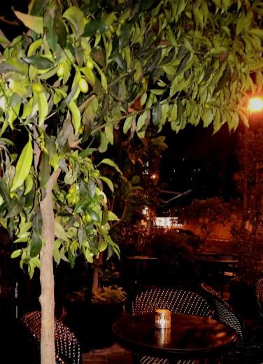 coffe bar בשעת לילה מאוחרת